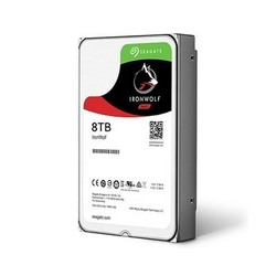 Seagate IronWolf 8TB 3,5 256MB ST8000VN0022