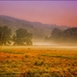 Poranna mgła – plakat wymiar do wyboru: 42x29,7 cm