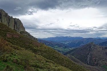 Fototapeta fascynująca roślinność górska fp 1479