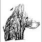 Wilk - plakat wymiar do wyboru: 50x70 cm