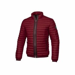 Kurtka zimowa Pit Bull West Coast Light Padded Jacket Maxwell Burgundy - Burgundy