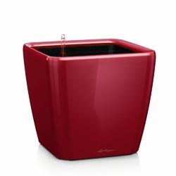 Donica lechuza quadro ls 21 - scarlet red - połysk - czerwony