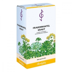 Frauenmantel herbata ziołowa