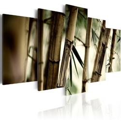 Obraz - azjatycki las bambusowy