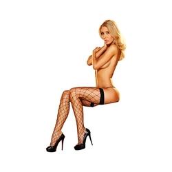 Pończochy z siateczki - lapdance fencenet thigh high black