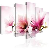 Obraz - magnolie: różowe kwiaty