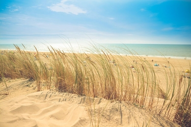 Słoneczne wybrzeże - plakat wymiar do wyboru: 80x60 cm