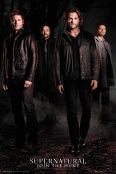 Supernatural Nie z tego świata sezon 12 - plakat
