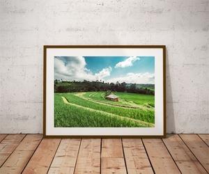 Pola - plakat premium wymiar do wyboru: 70x50 cm