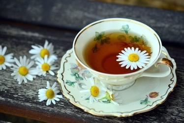 Fototapeta na ścianę herbata z rumiankiem fp 1148