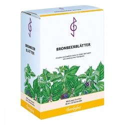 Herbata lecznicza z liści jeżyn