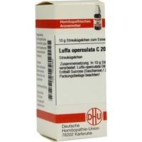 Luffa operculata c 200 globuli