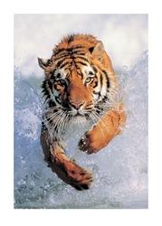 Running wild - tygrys - reprodukcja