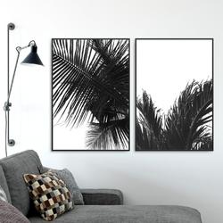 Zestaw dwóch plakatów - black tropics , wymiary - 50cm x 70cm 2 sztuki, kolor ramki - biały