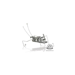 Insektoid zestaw naukowy robot