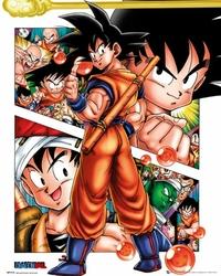 Dragon Ball Bohaterowie - plakat