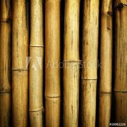 Obraz na płótnie canvas trzyczęściowy tryptyk bambusowy tło