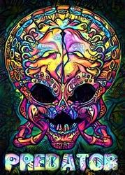 Psychoskull, predator, alien obcy - plakat wymiar do wyboru: 21x29,7 cm