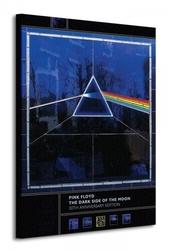 Pink floyd dark side of the moon, 30th anniversary - obraz na płótnie