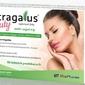 Astragalus beauty x 60 tabletek