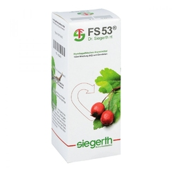 Fs 53 dr.siegerth h fluessig