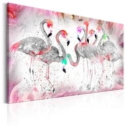 Obraz - rodzina flamingów
