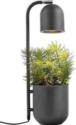 Lampa stołowa botanica antracytowa