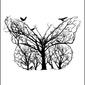Motyl - plakat wymiar do wyboru: 40x50 cm