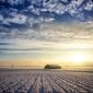 Obraz dom na polu pokryty śniegiem fp 2064 p