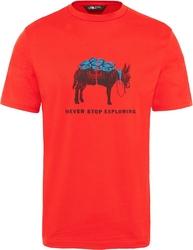 T-shirt męski the north face tansa t92s7z15q