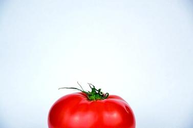 Fototapeta kawałek pomidora z szypułką fp 1007