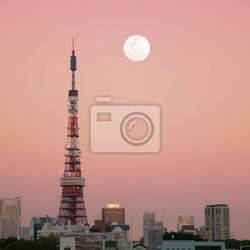 Fototapeta tokyo tower