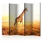 Parawan 5-częściowy - żyrafa - spacer room dividers