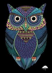 Kolorowa Magiczna Sowa - plakat