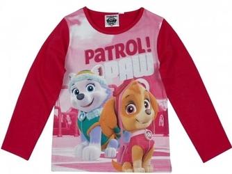 Bluzka psi patrol ,,patrol paw 3 lata