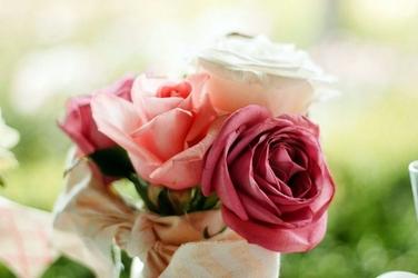Fototapeta romantyczne róże fp 498
