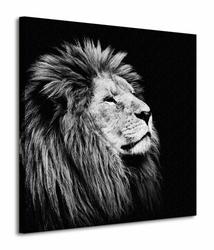 Majesty - Obraz na płótnie