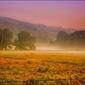 Poranna mgła – plakat wymiar do wyboru: 59,4x42 cm