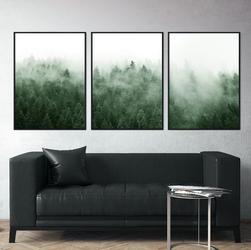 Zestaw trzech plakatów - woody view , wymiary - 40cm x 50cm 3 sztuki, kolor ramki - biały
