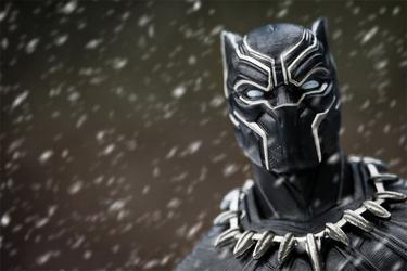 Black panther t-challa - plakat wymiar do wyboru: 59,4x42 cm