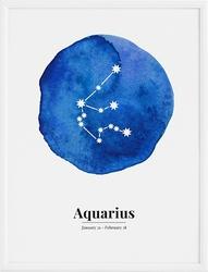 Plakat Aquarius 21 x 30 cm