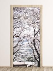 Fototapeta na drzwi drzewa p38