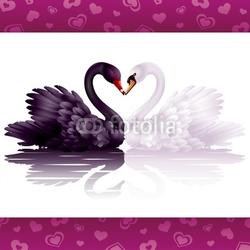 Obraz na płótnie canvas czteroczęściowy tetraptyk Dwa pełne wdzięku łabędzie: czarne i białe serce