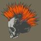 Fotoboard na płycie ilustracji wektorowych z punk czaszki