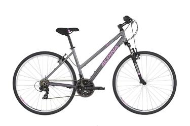 Rower alpina eco lc10 grey