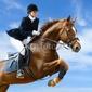 Plakat na papierze fotorealistycznym skoczek jeździecki - młoda dziewczyna skacząca z koniem szczawiowym