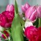 Fototapeta bukiet tulipanów i piwoni fp 324
