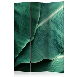 Parawan 3-częściowy - liście bananowca room dividers