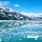 Kra na jeziorze - plakat wymiar do wyboru: 91,5x61 cm
