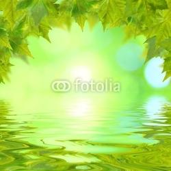 Obraz na płótnie canvas dwuczęściowy dyptyk Zielone liście na wiosnę